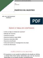 Clase 8 - Diseño Estadístico Del Muestreo