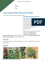 ¿Sabías Que Puedes Cultivar Fruta Sin Tener Un Jardín
