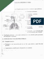 Sistema Respiratório Fisiologia.pdf