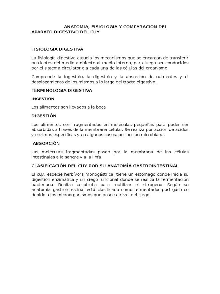 Famoso Anatomía Y Fisiología De La Sangre Regalo - Anatomía de Las ...