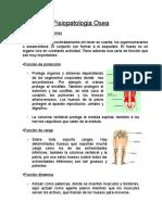 Fisiopatologia Osea
