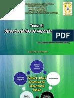 Tema 9 Continuación Bacterias Anaerobias