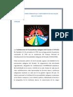 Organizaciones Indigenas y Movimientos Sociales Del Ecuador