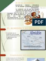 Industria Del Almidon