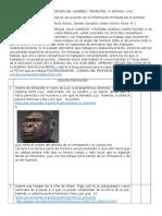 WebQuest N:2  Origen del Hombre