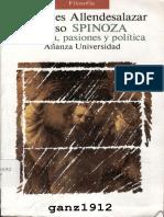 Allendesalazar Olaso, Mercedes - Spinoza (Filosofía, pasiones y política)