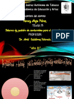 Diapositivas Equipo 17