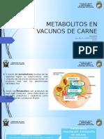 Metabolitos en Vacunos de Carne