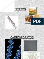 CARBOHIDRATOS_power_point.ppt