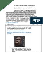 Hhistoria-2.docx origen del hombre