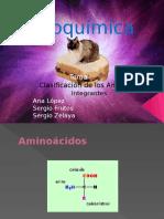 Aminoacidos