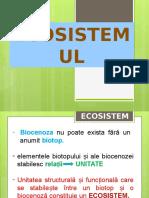 Ecosistemul