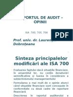 Raport audit power point