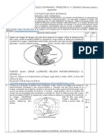 WEBQUEST N°1- Origen geológico de Panamá