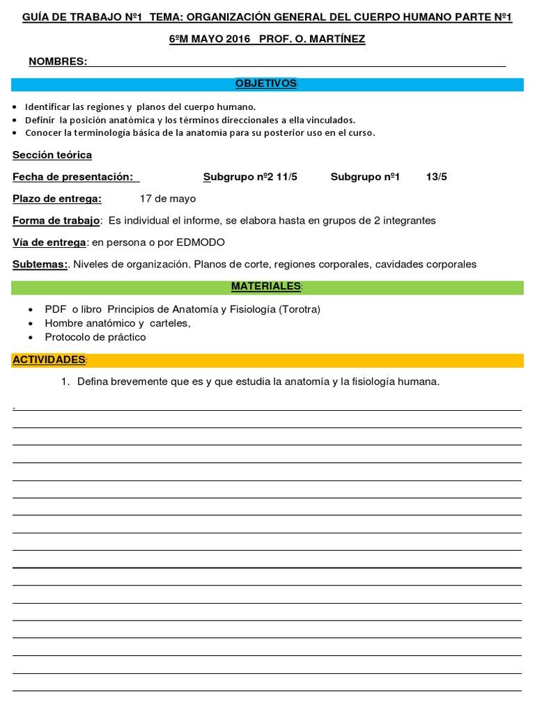 GUÍA de TRABAJO Nº1TEMA Organizacion General Del Cuerpo Humano