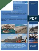 Projet Géotechnique ( dimensionement palplanche ) (2).pdf