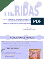 heridasolga-091123124815-phpapp02