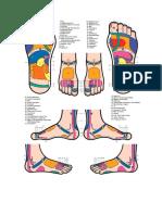 Reflexológia_láb térkép