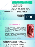 SEMINARIO-RN-modificado.pptx
