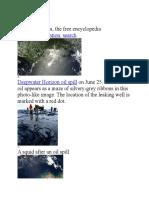 Oil spill reportsss