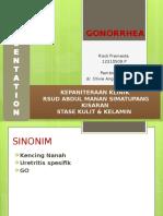 Presentation1 Kulit & Kelamin Risdi