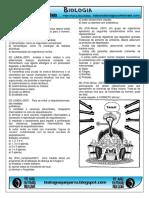 respostas da galera virus e reinos (1).pdf