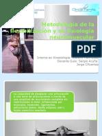 Metodología de La Flexibilización y Su Fisiología Neuromuscular