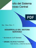 Embriología Medula Espinal 14 II