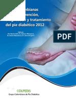 Guias Colombianas de Pie Diabetico 2012 (1)