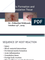 Granulation Tissue 13102015