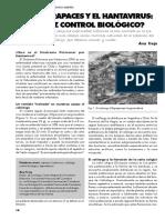 Las Aves Rapaces y El Hantavirus, Un Eficaz Control Biologico - Desde La Patagonia Difundiendo Saberes