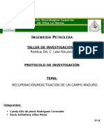 protocolo 2  2015