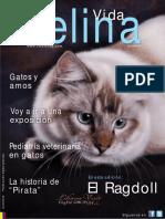 revista vida felina-1