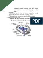 ventrikel otak