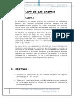 Informe de Bioquimicasssssssssssssssssss