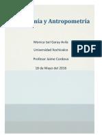 Ergonomía y Antropometría