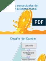 Bases Conceptuales Del Modelo Biosicosocial