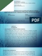 Presentación Planificacion Proyecto Final - BETANCOURT Y PADILLA