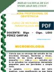 Microbiologia concepto