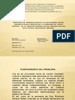 Presentación Remodelacion PLaza Gnl. Rafael Urdaneta - MUÑOZ Y CONTRERAS
