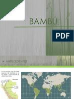 BAMBU-sitema constructivo