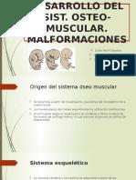 10 Desarrollo Del Sistema Osteo- Muscular