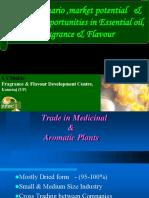 Global Scenario of the Flavor Industry