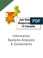 informationtechnology-rolesandresponsibilities