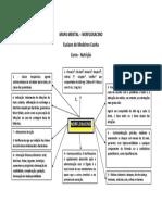 Mapa Mental NORFLOXACINO Elza PDF