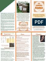Triptico Té Essiac.pdf