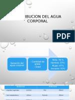 Distribucion Del Agua Corporal