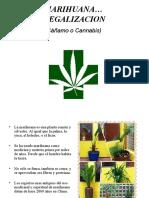 legalizacion