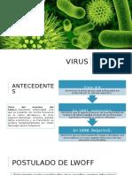 Virus.pptx