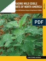 Foraging Wild Edible Plants